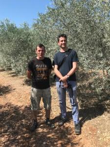 Producteur huiles d'olive